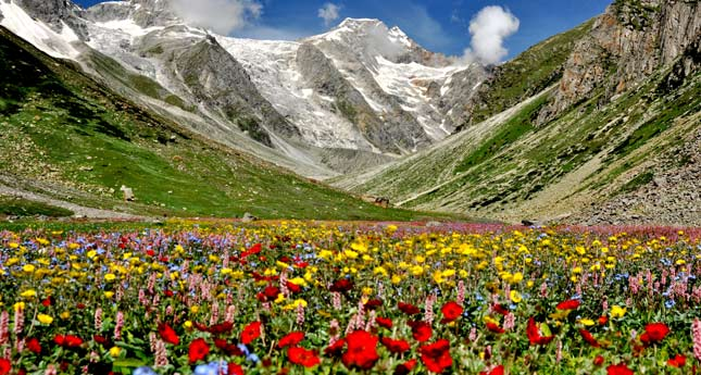 A beautiful scenic view of Valley of Flowers
